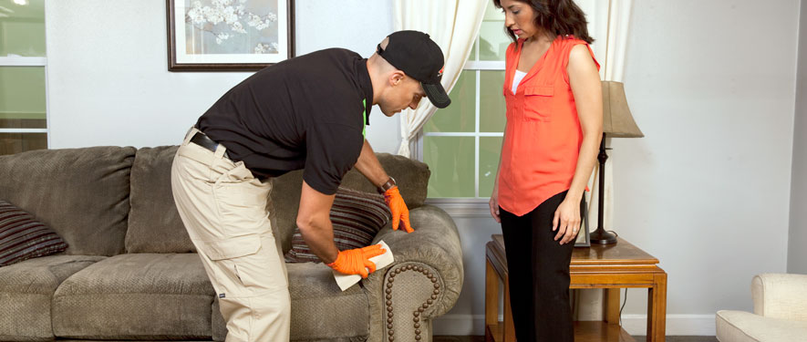 Amory, MS carpet upholstery cleaning