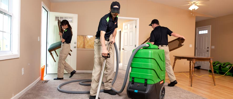 Amory, MS cleaning services